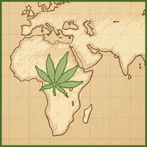 Hemp Industry Growth on the African Continent