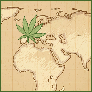 The French Hemp Industry
