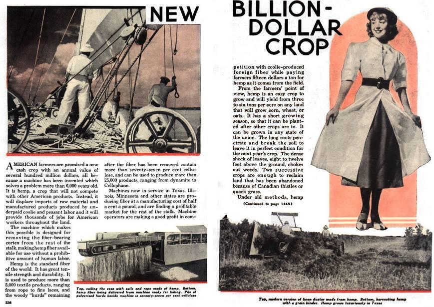Popular Mechanics - The New Billion Dollar Crop