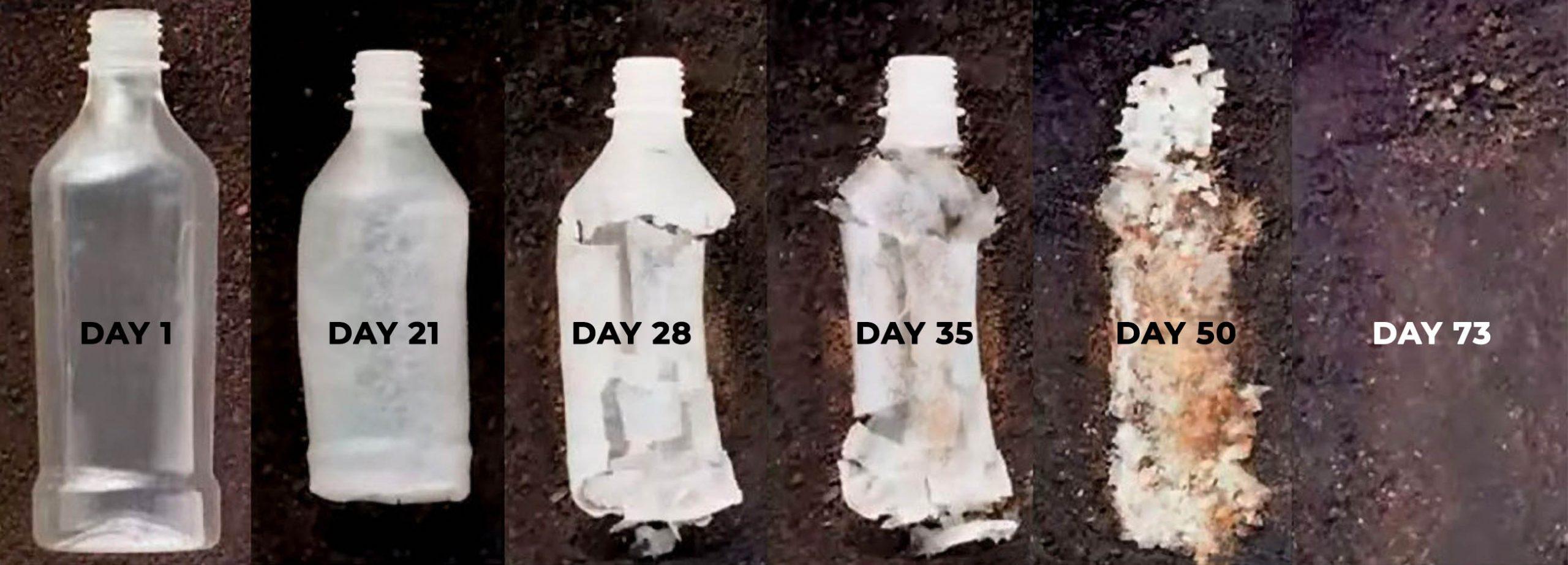Is Hemp Plastic Biodegradable