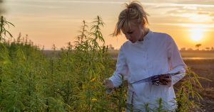 Long-Term Benefits of Growing Hemp for Commercial Applications
